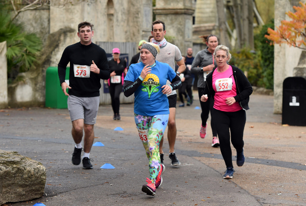AAT Events | Chessington Running Wild: 20% off at